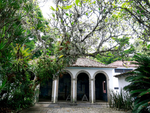 Sítio Roberto Burle Marx, no Rio, amplia acesso ao público
