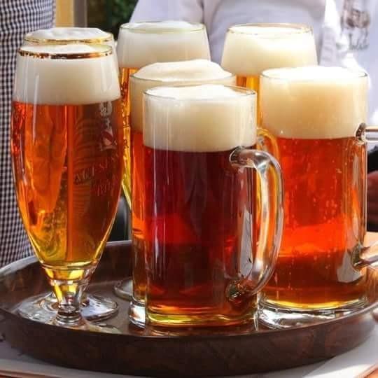 Cervejas artesanais brasileiras chegam em Angola