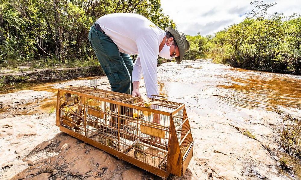 Foto: Ministério do Meio Ambiente