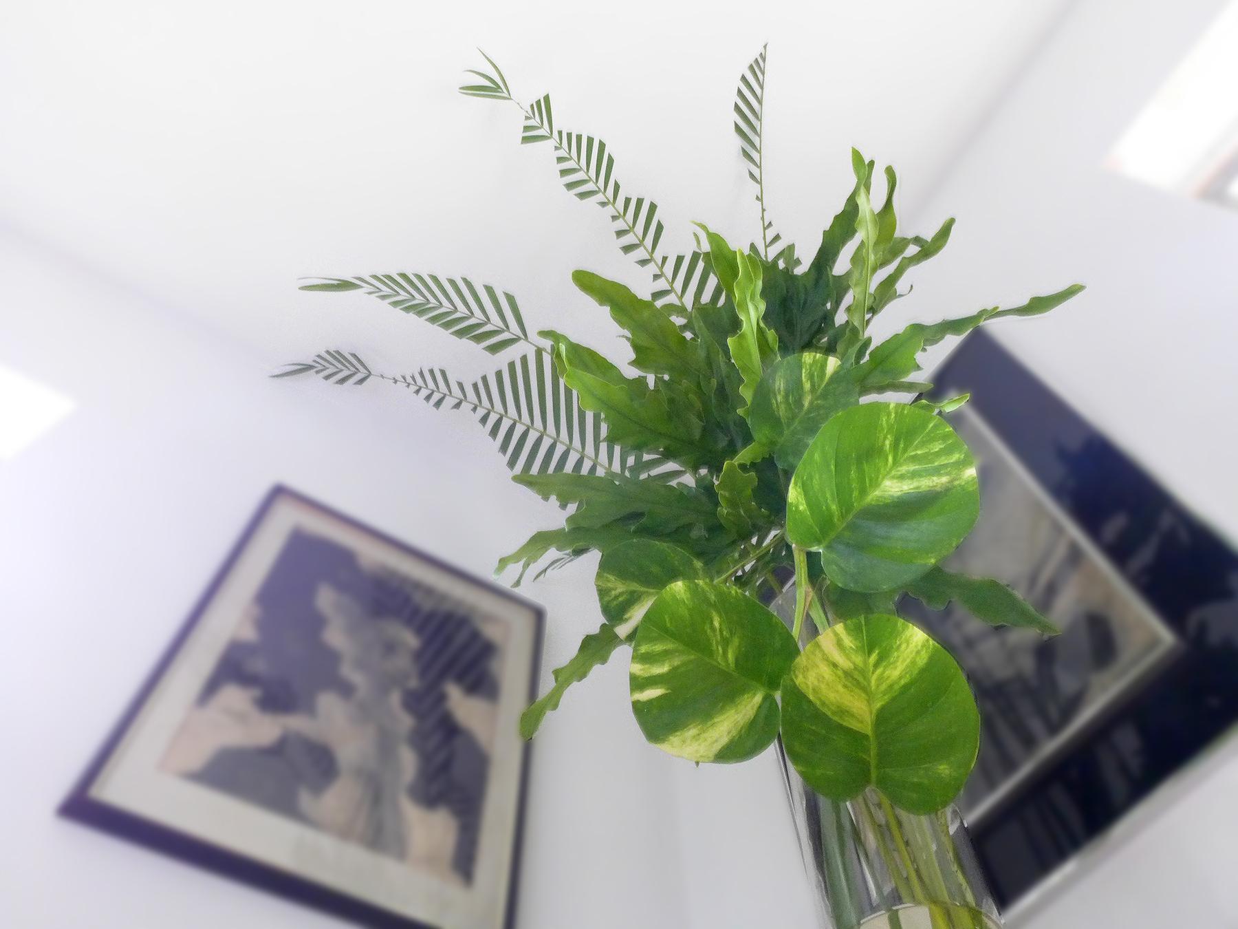 Ikebana