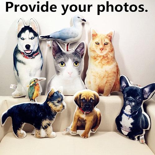 Customised Pet Cushions