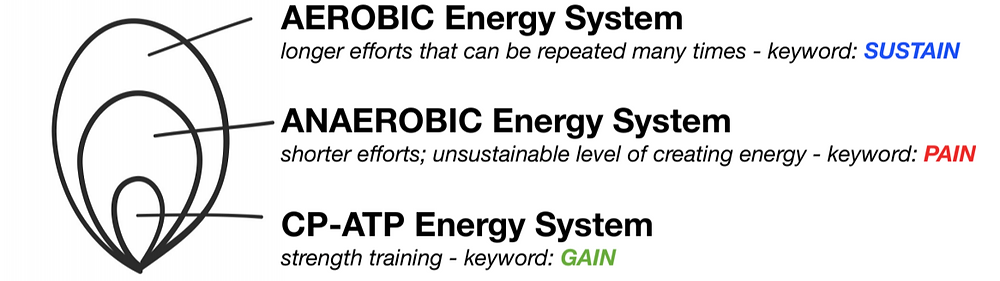 Aerobic energy system, anaerobic energy system, crossfit, gym, exercise, work-out