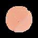 picto logo_Orange clair_edited.png