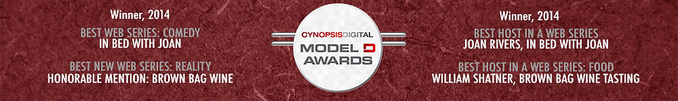 cynopsis awards.jpg