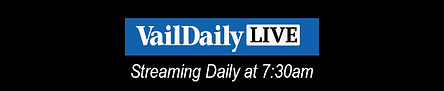 VDL news.jpg