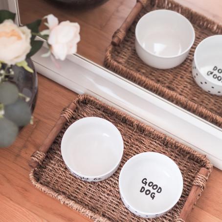 DIY zdjelice za ljubimce