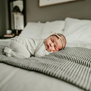 Collins' Newborn