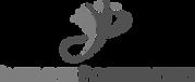 logo-infinite-possibilites.png