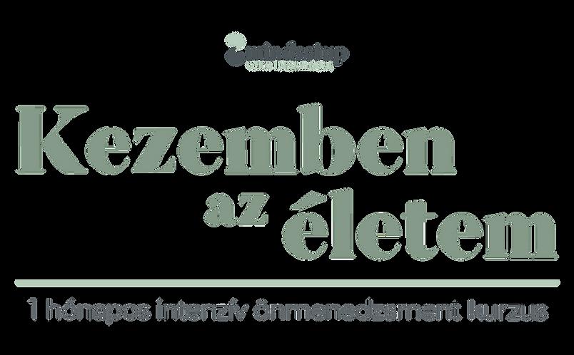Mindsetup_web_wix_fejlec_Önmenedzsment_