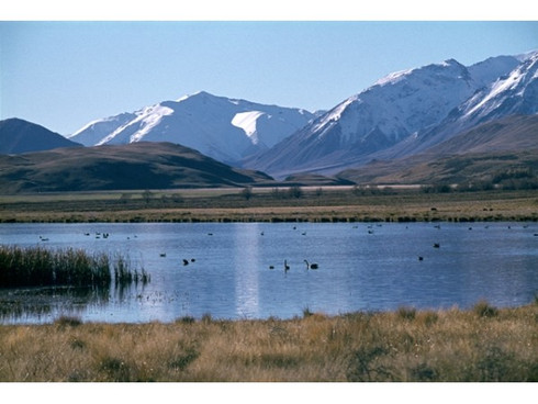 Foothills, Mid Canterbury, New Zealand