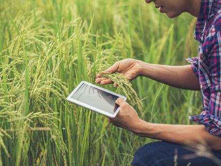 Menos tierras y más costos: ¿Cómo hacer más eficientes los procesos agrícolas?