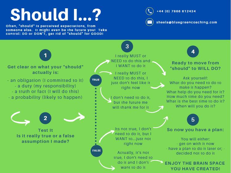 """""""What should I do?"""" Sheela Hobden www.bluegreencoaching.com"""
