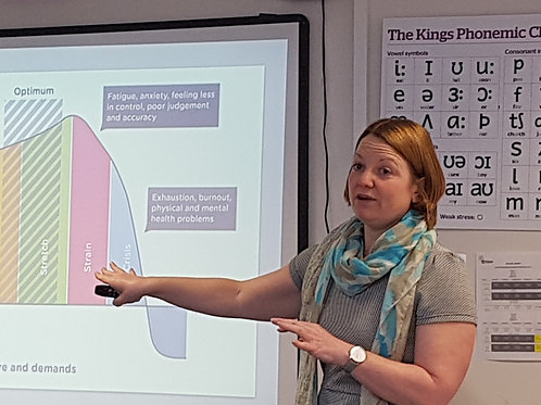 Organisation Coaching and Workshops