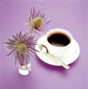 coffee cup thistle.jpg