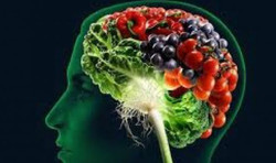 nutrition remains important for brain health