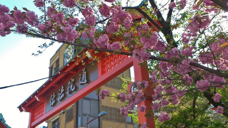 Asakusa Gate, Tokyo, Japan