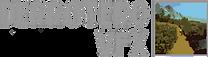 Logo Derrotero VFX
