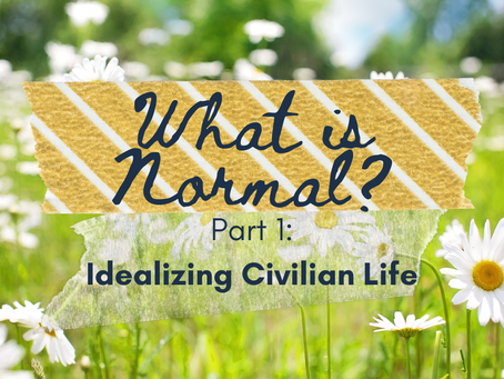 What is Normal? Pt. 1: Idealizing Civilian Life