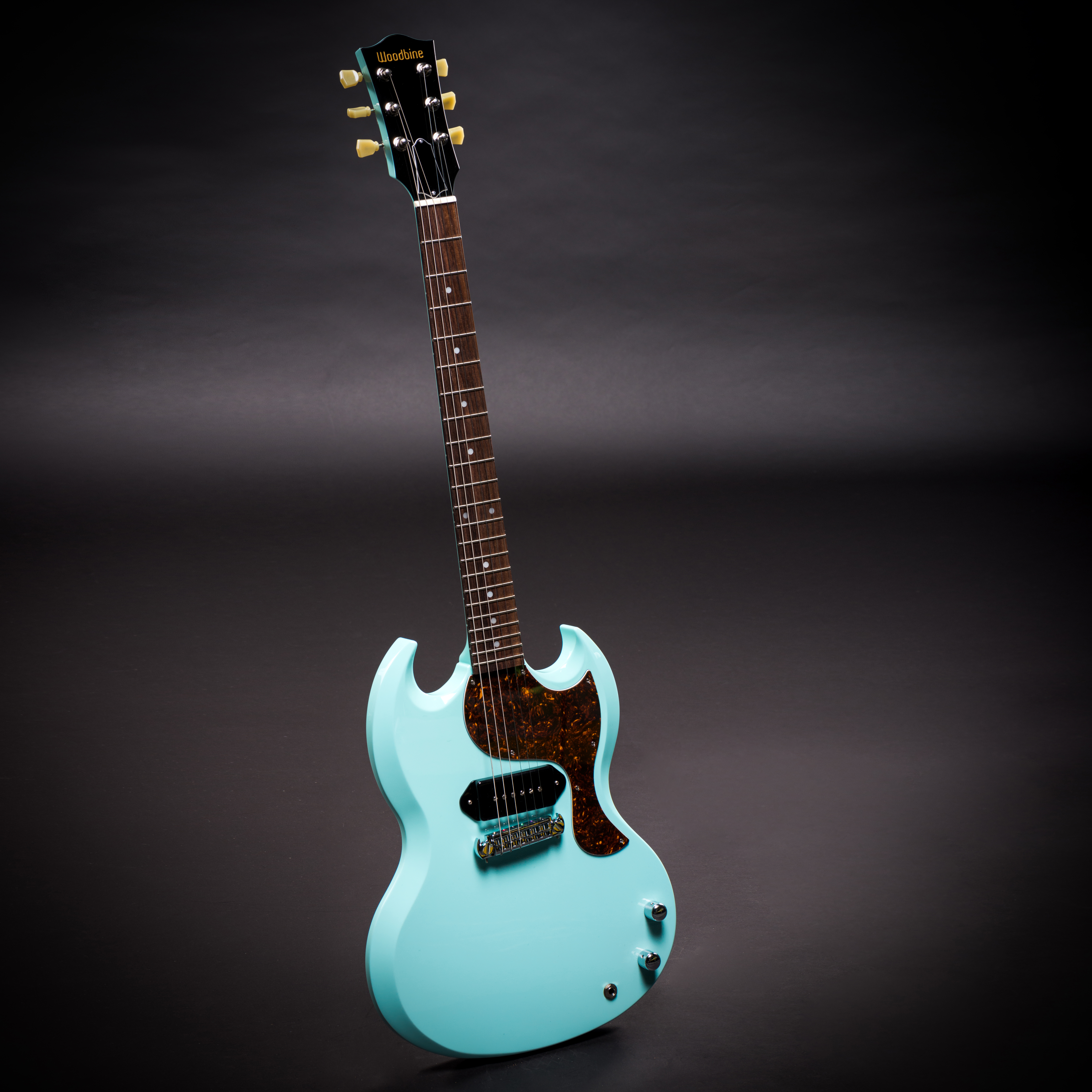 Sonic Blue Double Cutaway