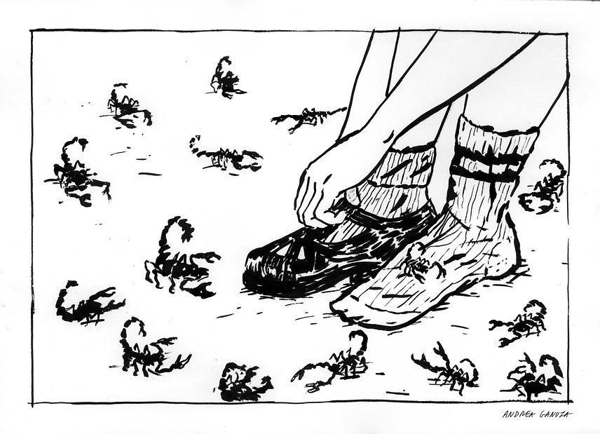 alacranes (ilustración por Andrea Ganuza