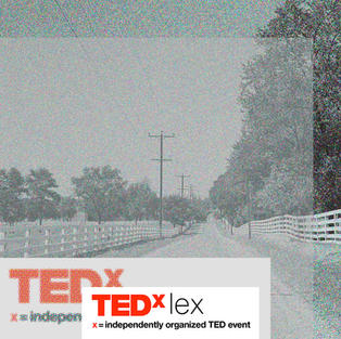 TEDx Lex