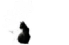 catwebIMG_5883.PNG.png