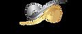 agile logo.png