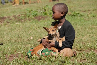 Boy-and-dog-rabies-campaign-396x265.jpg