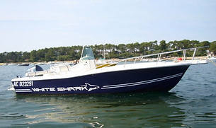 Cap Navy Whit Shark