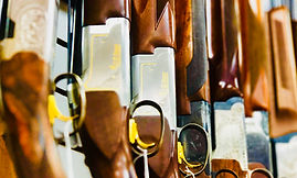 o/u sxs shotgun beretta cz