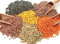 lentils-thumb.jpg