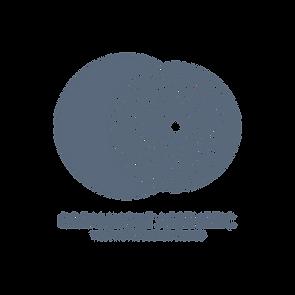 Dreamlight_Logo_Grey-T.png