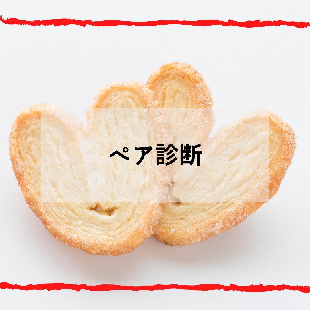 トータル魅力コース(ペア診断)