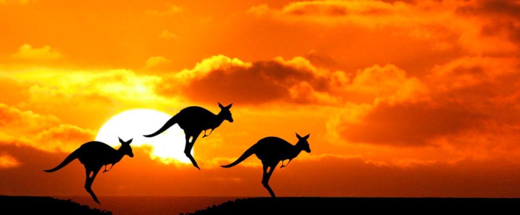 curiosidades-sobre-australia-1-1023x424.