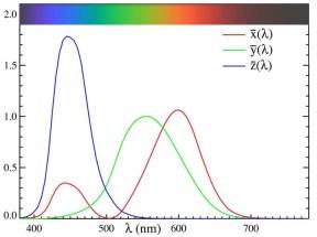 圖一:眼睛紅、綠、及藍色視錐對於不同波長的常規反應