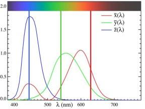 圖二:眼睛反應示意圖,說明了對於個別選擇的紅、綠、及藍原色的反應