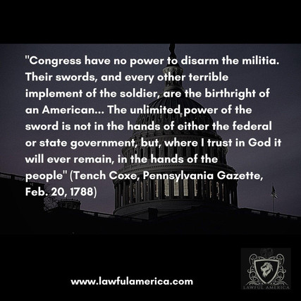 Congress have no power to disarm the mil