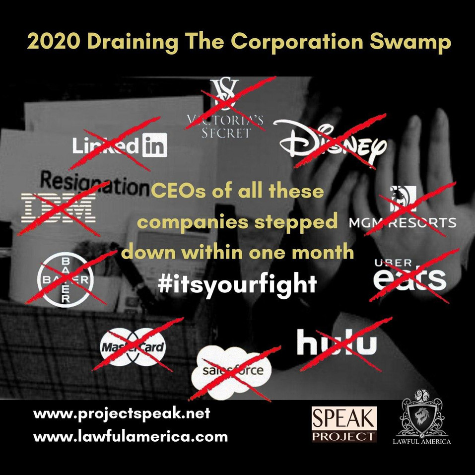 2020 Draining the Corporation Swamp.jpg