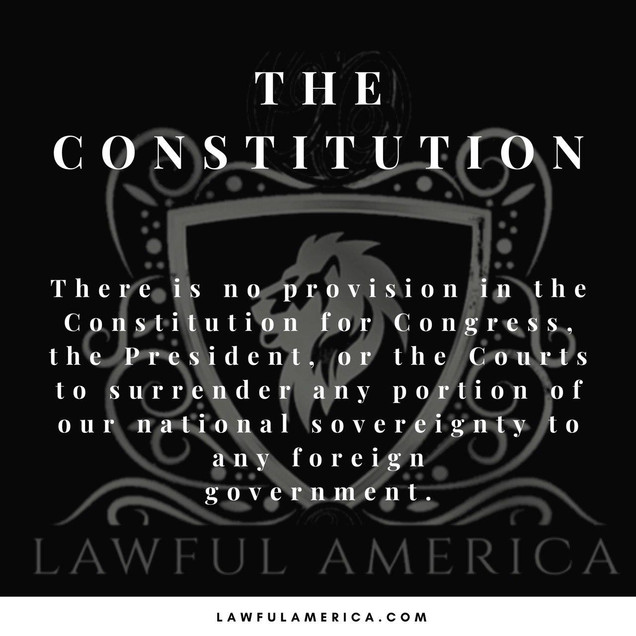 The Constitution 2.jpg