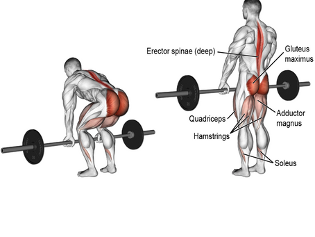 Deadlifting For Greater Health