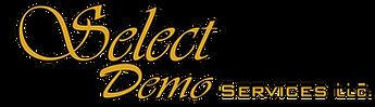 Select Demo - Classic Revamp FLAT GOLD.p