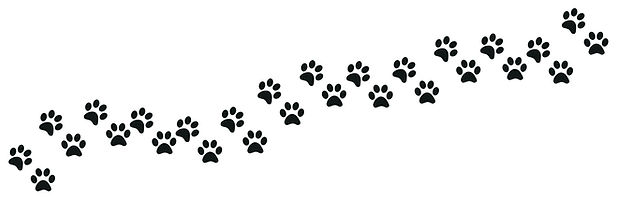 Agave Dogs Rescue paw prints