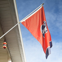 TennesseeFlag.jpg