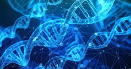 In the World of DNA, What is Nutrigenetics and is it Right for Me?
