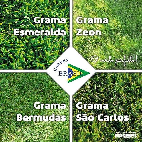 Grama - Esmeralda M²60x40 Itograss