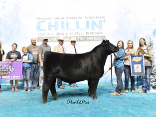 2018 Jr Simmental Nationals