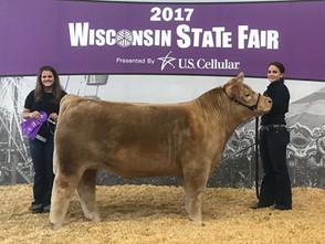2017 Wisconsin State Fair