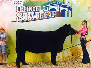 2017 Illinois State Fair