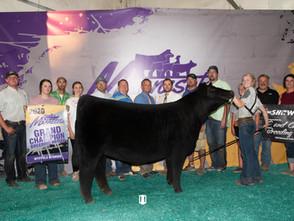 2020 MN Youth Livestock Expo