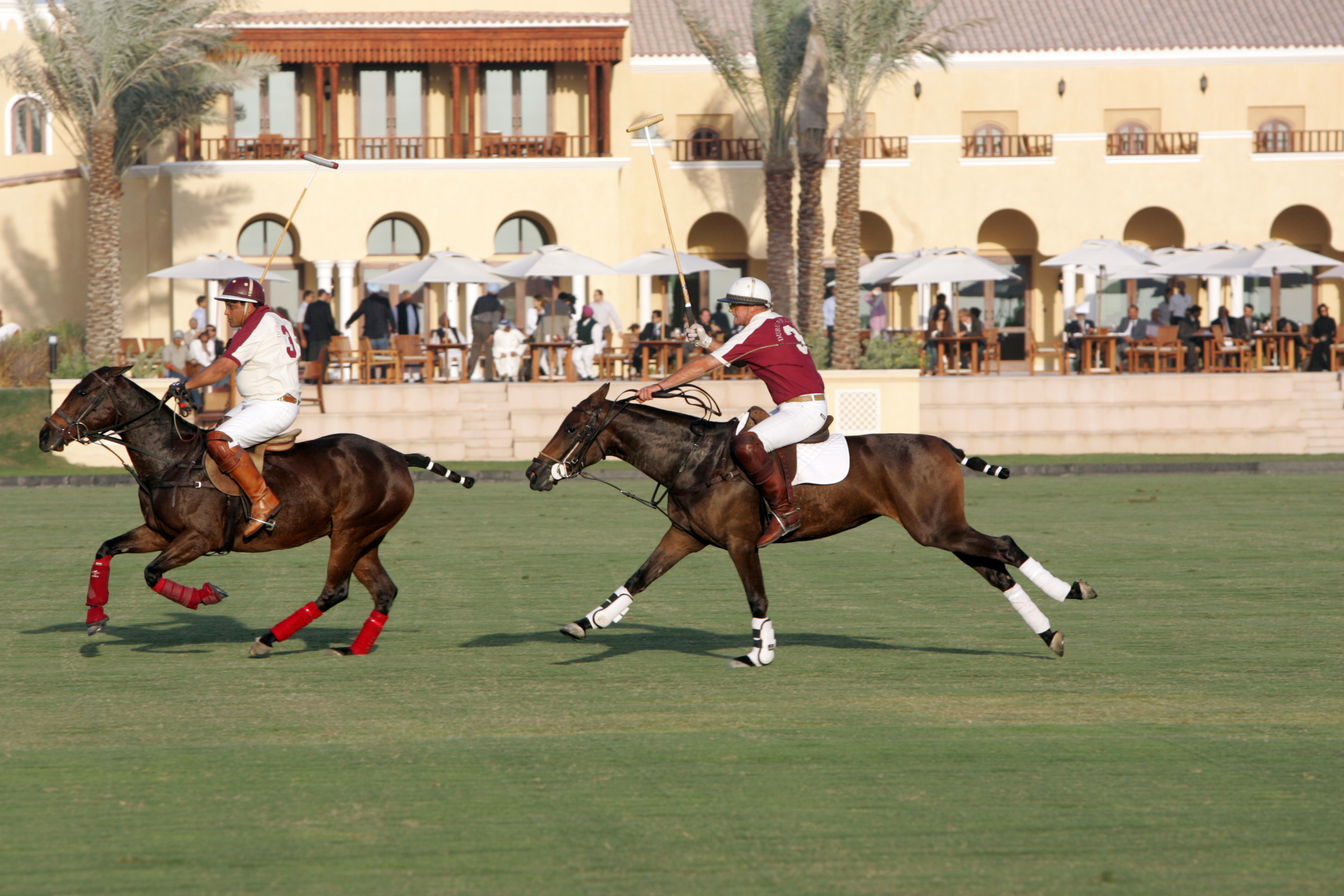 polo match- palermo terrace_ji